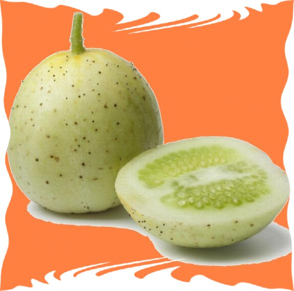 Gemüse Gurke Zitrone 100 Samen