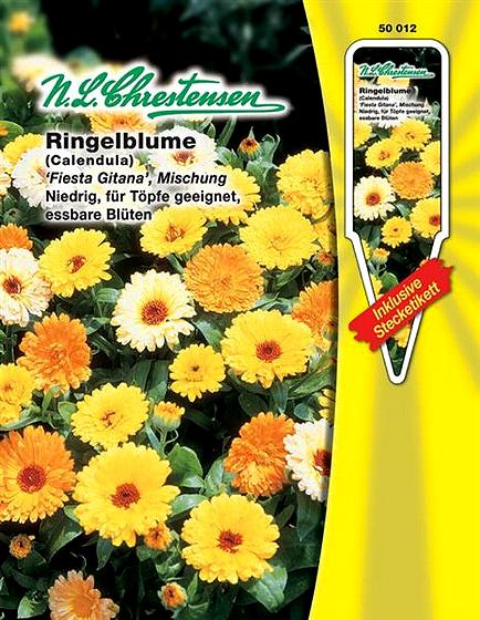 Ringelblume /'Touch of Red Mix/' Schnittblume  /'Calendula officinalis/' 50013