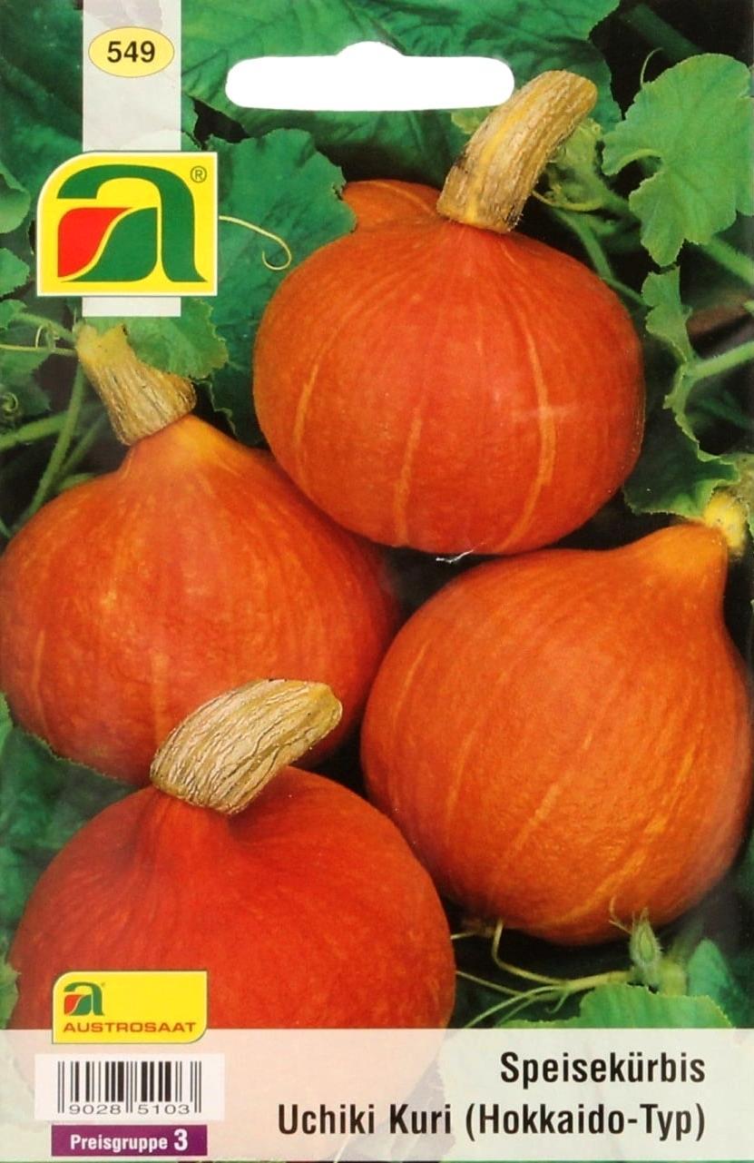 Muskatkürbis bis 10 kg schwere Früchte 10 Samen